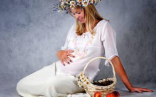 Как развивается ребенок по неделям беременности. Беременность от зачатия до родов по неделям: развитие ребенка и ощущения женщины, советы будущим мамам