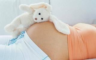Через сколько дней наступает беременность. Когда наступает беременность после полового акта. Сперматозоды и беременность