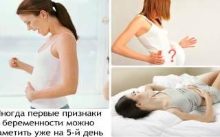 Первые признаки беременности на первой неделе. Повышение базальной температуры. Может ли тошнить на этом сроке