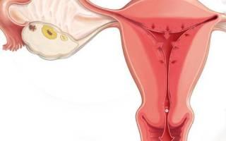 Месячные пришли при беременности. Когда могут идти месячные при беременности? Возможны ли месячные при беременности