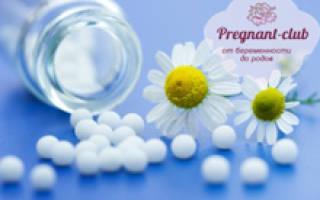 Дозировка гомеопатических препаратов для беременных. Основная суть гомеопатии. Разведения в гомеопатии при беременности