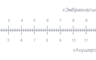 Какой срок беременности калькулятор. Сроки беременности: акушерский и эмбриональный — как определить и не запутаться в сроках