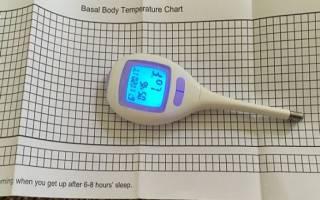 Как мерить базальную температуру беременным. Базальная температура по фазам. Особенности построения графика БТ в период беременности