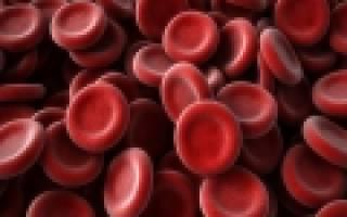 Нормальные показатели крови у беременных. Основные показатели данного анализа. Почему у беременных особые нормы
