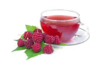 Чем полезен чай из малины для беременных. Польза ягод малины для беременных женщин