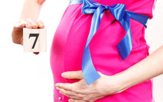 С какой недели начинается 7 месяц беременности. Седьмой месяц беременности: развитие ребенка