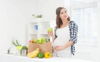 Какие продукты нужно исключить беременным. Женщины в зоне риска. Сыры с плесенью