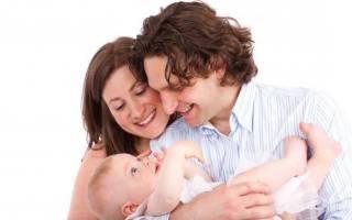 Можно ли забеременеть при кормлении грудью. Как организовать грудное вскармливание: рекомендации консультантов и советы кормящих мам