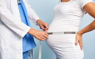 На каком сроке живот растет быстрее. Какую форму имеет живот во время беременности. Нормы и отклонения