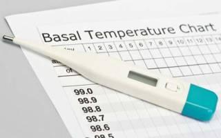 Можно ли определить беременность по базальной температуре. Как с помощью градусника определить беременность