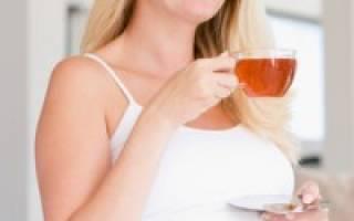 Чай листьев смородины во время беременности. Польза черной смородины для будущей мамочки. Травы для профилактики, укрепления и гармонизации организма