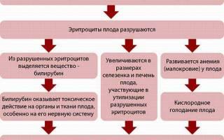 Конфликт резус-факторов матери и плода при беременности: признаки и лечение. Почему возникает резус-конфликт при первой или второй беременности
