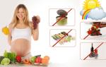 Лучшая еда для беременных. Рацион беременной женщины: что есть можно и нужно, а что категорически запрещено. Что нельзя кушать беременной