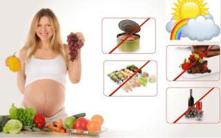 Питание при беременности: как сбалансировать свой рацион. Что нельзя есть беременным во время беременности: список продуктов запрещенный на ранних сроках
