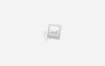 Народные средства для прерывания на большом сроке. Как прервать нежелательную беременность на раннем сроке таблетками и народными средствами